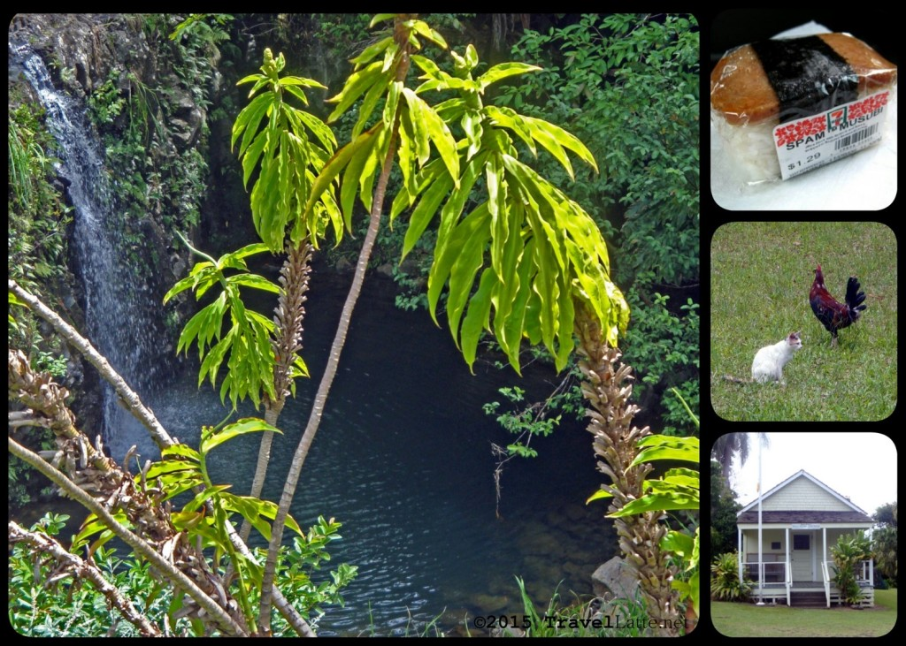 Photo Collage: The Road to Hana