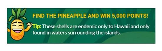 """Image: Hawaii.com """"Find the Pineapple"""" banner"""